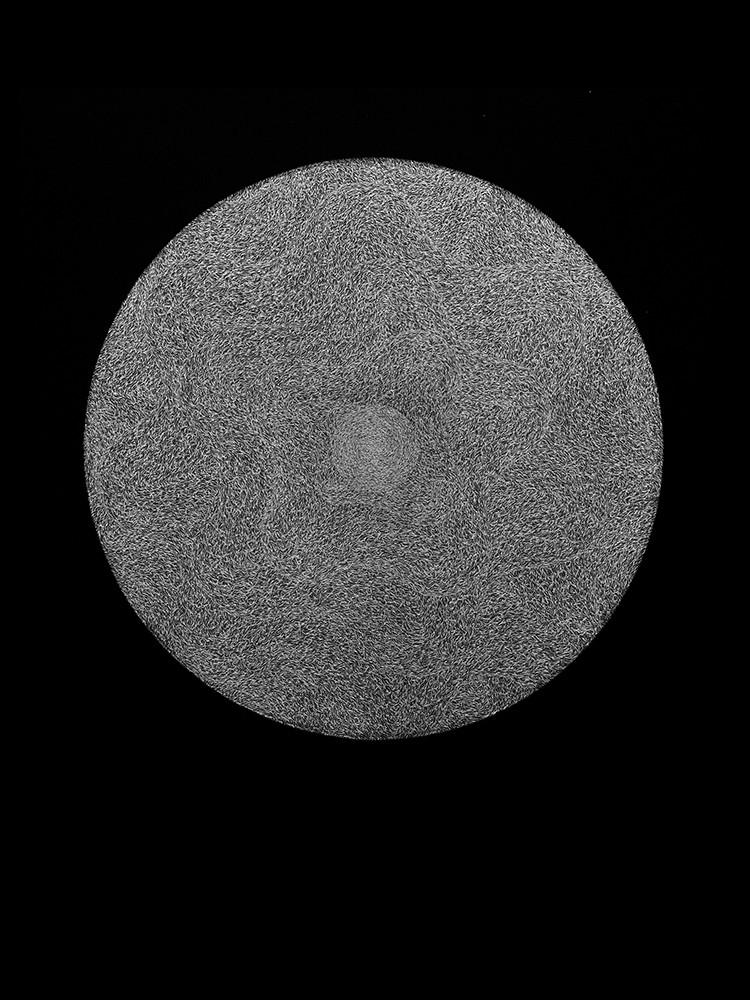 Suo Yuan Wang - Lune Noire ( l'ouïe) - 5(éveil)