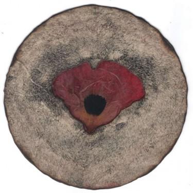 disque botanique 2012_002recto